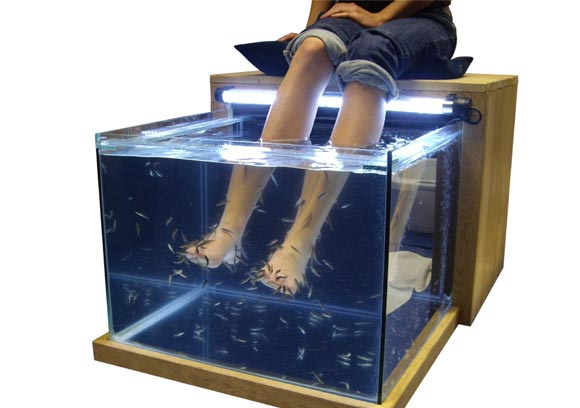fish-pedicure.jpg