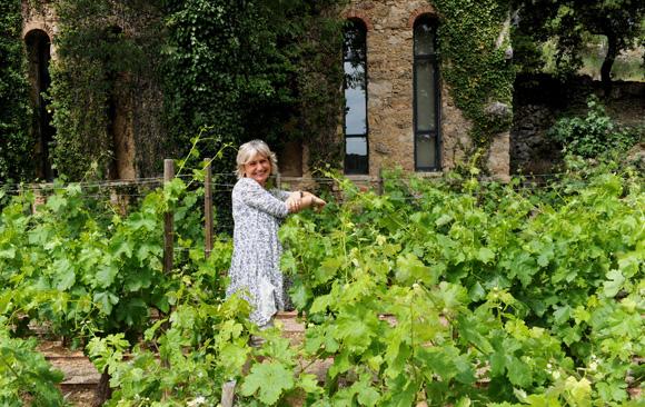 Château Mentone. Une principauté du bonheur à fleur de vignes