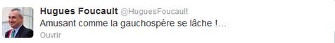 528915-foucault2
