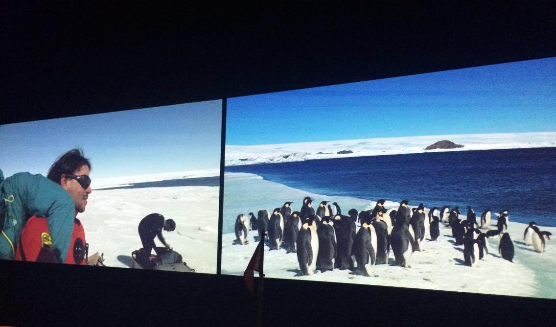 Musée des Confluences. Antarctica, un voyage au bout du monde
