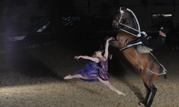 Equita Lyon. Le Cadre Noir entre dans la danse