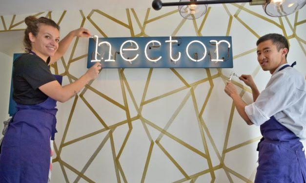 Hector. Une créativité sans fin
