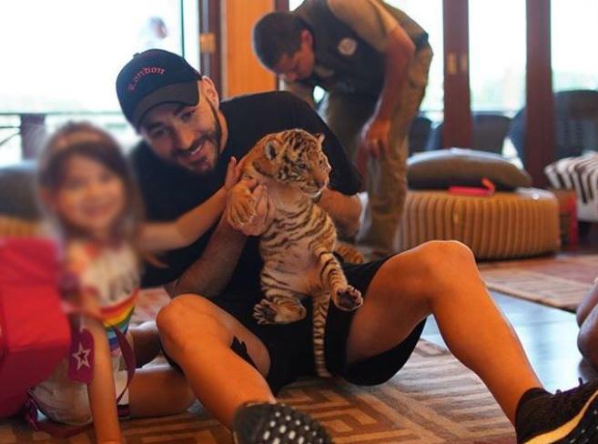 Karim Benzema dans l'œil du tigre