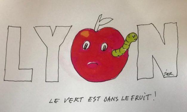 Elu maire de Lyon, ce samedi. Grégory Doucet, en vert et contre tous.